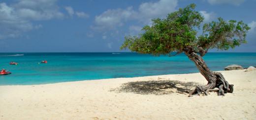 Aruba playa